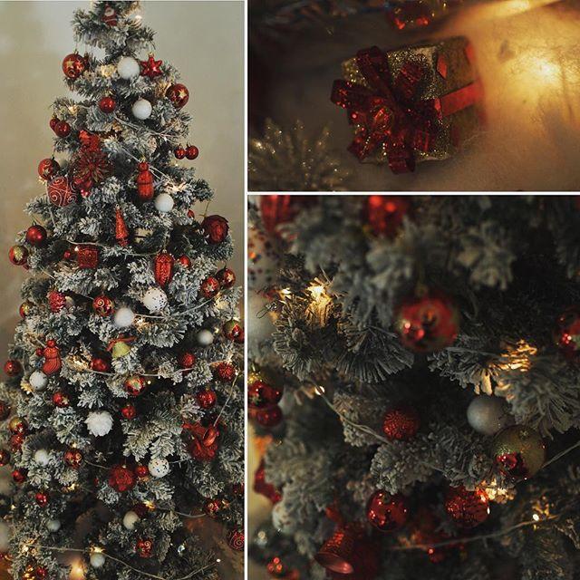Allu Arjun Christmas Celebrations with his family  - Stunmore