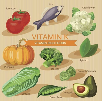 Vitamin K- Rich Food sources.